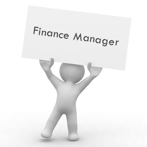 Image result for MANAGER FINANCE